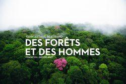 expo_forets_hommes_ot_porte-du-hainaut_avril2015-(2)