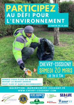 affiche défi pour l'environnement(2)